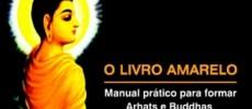 capa_livro_amarelo