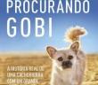 capa_procurando_gobi