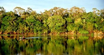 Amazônia: Foto: CC by 2.0/ Andre Deak